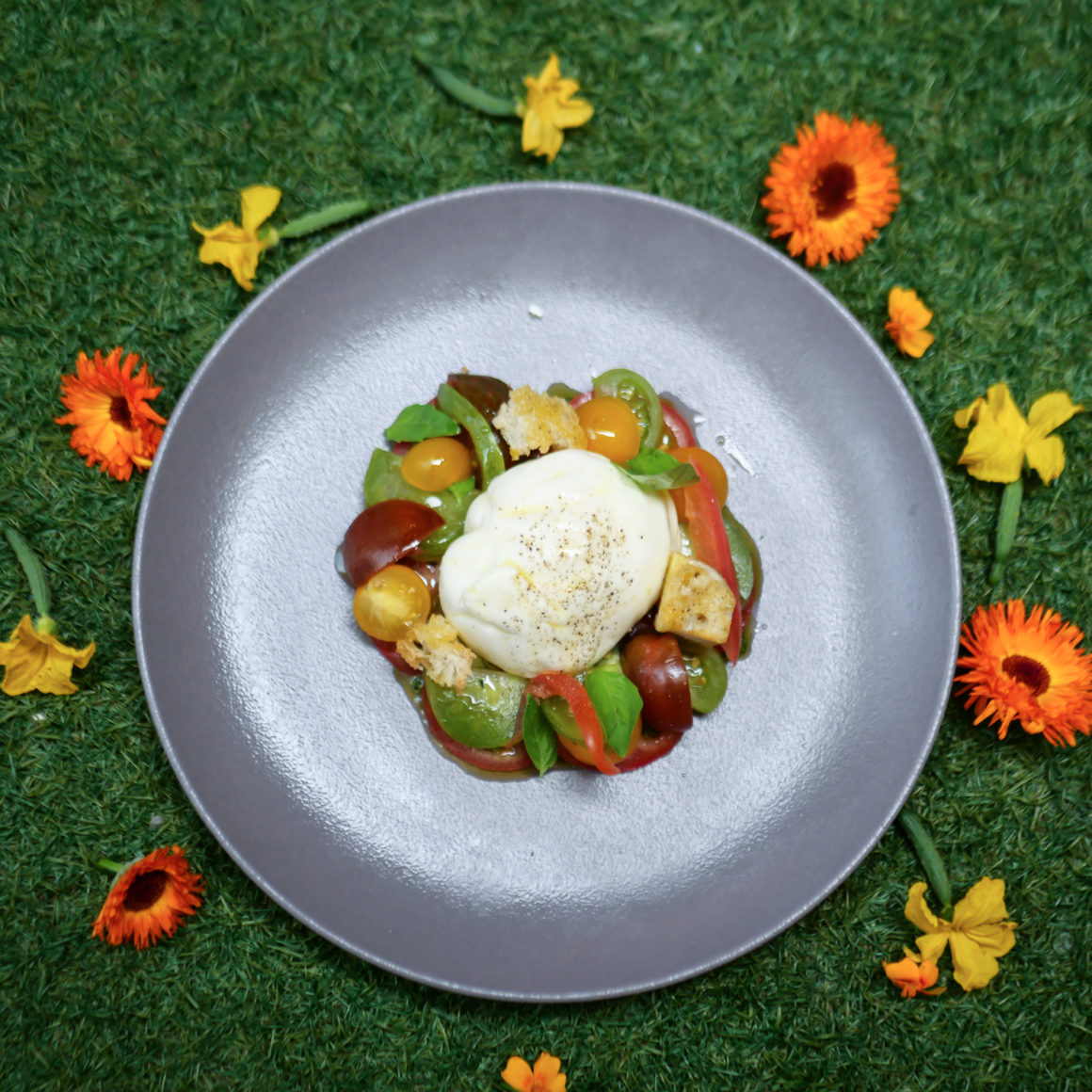 The Galvin HOP Summer Menu & Terrace for Al Fresco Dining: Burrata with Heritage Tomatoes