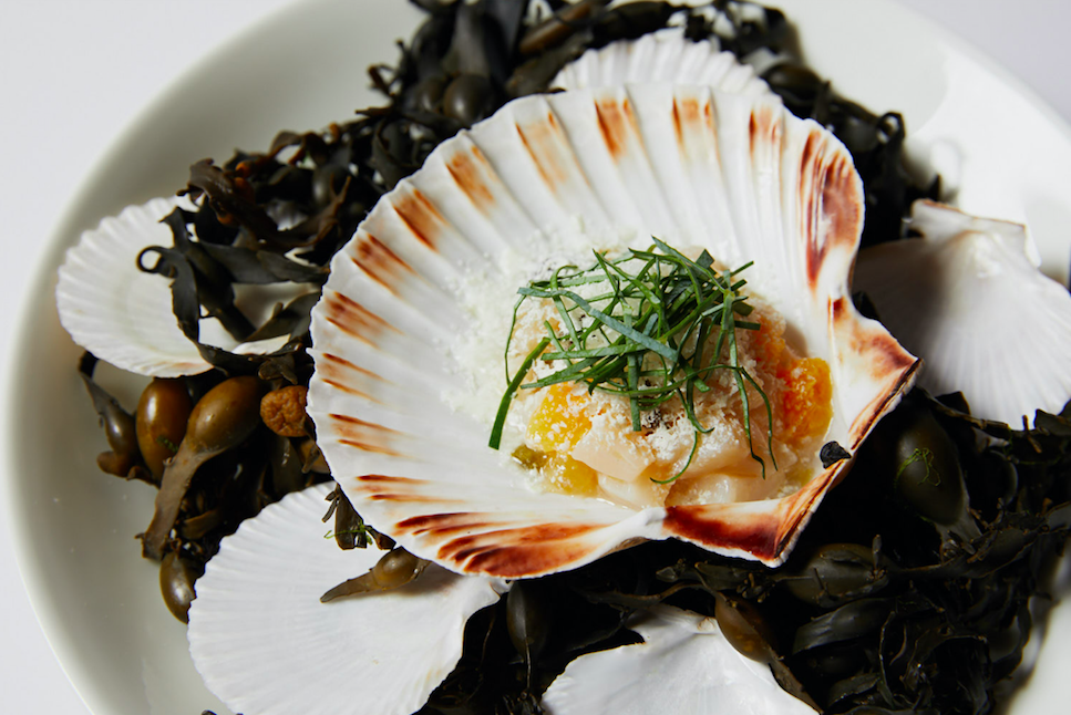 The Luxe List: 8 New Openings For November - Relaunch of The Grill at The Dorchester: Scallops from Tom Booton's New Menu