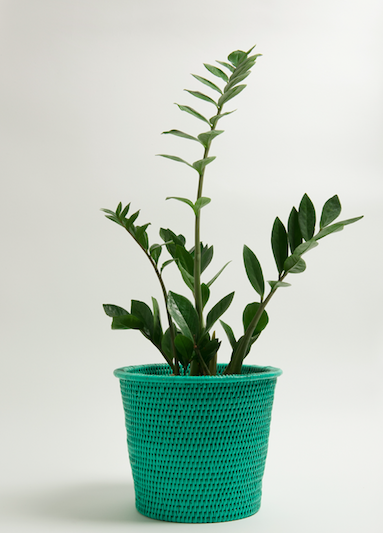 Make Your Work From Home Space Beautiful With Kalinko: Kanbalu Rattan Planter (£42)