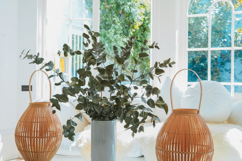 3 Ways to Bring a Touch of Nature into Your Home
