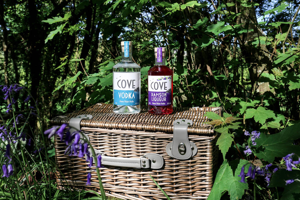 Cove Vodka made in Devon from the finest Kind Edward potatoes! Pictured here with Damson Gin Liqueur (Damson Liqueur RRP - £33 per 50cl)