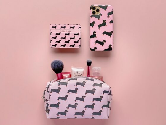 Top 5 Christmas Gifts from Coconut Lane - Daschund Phone Case