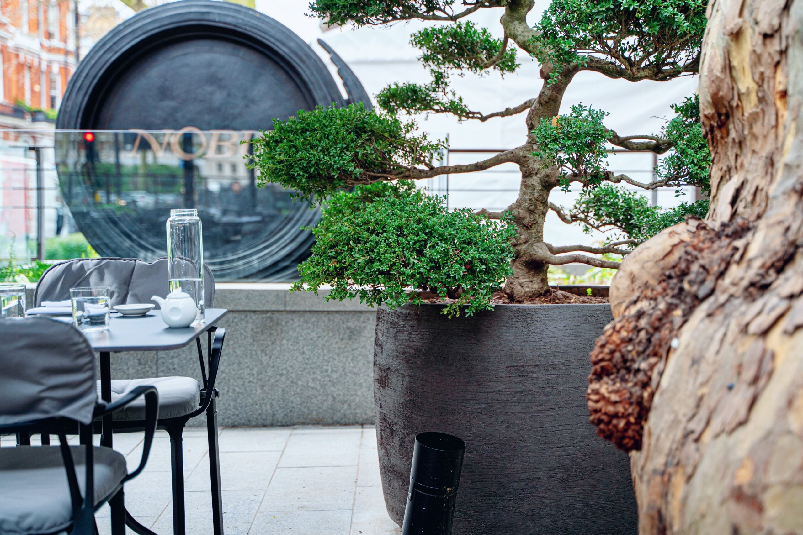 Enjoy exquisite dishes at Nobu Portman Square like Miso Cod, Seafood Ceviche and Yellowtail Jalapeño - on the terrace from  April 12th and in the restaurant from May 17th