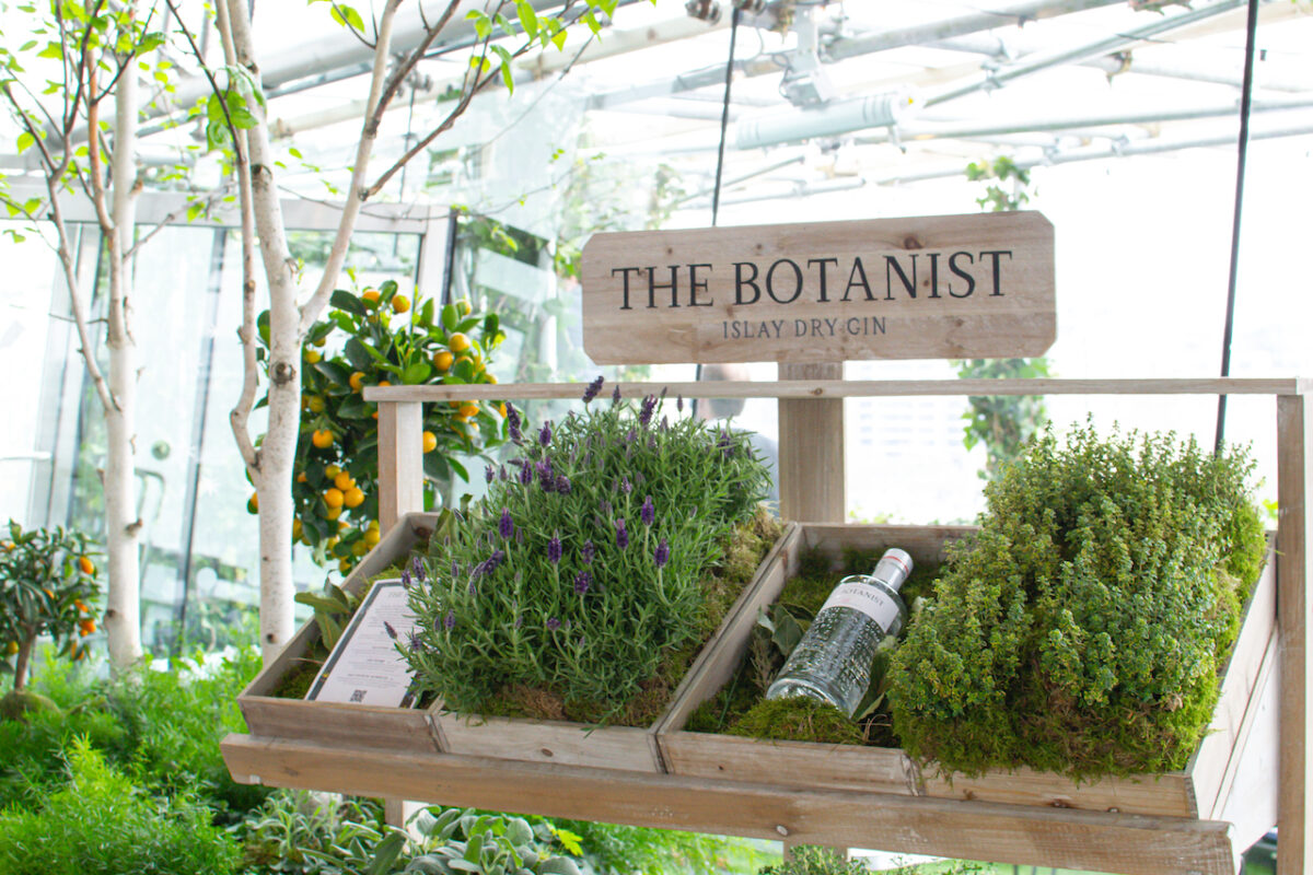 OXO Tower's New Rooftop Terrace with The Botanist Gin