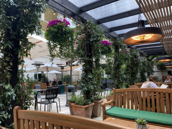 The Wigmore Terrace and Summer Garden - A tranquil alfresco spot in the very heart of London