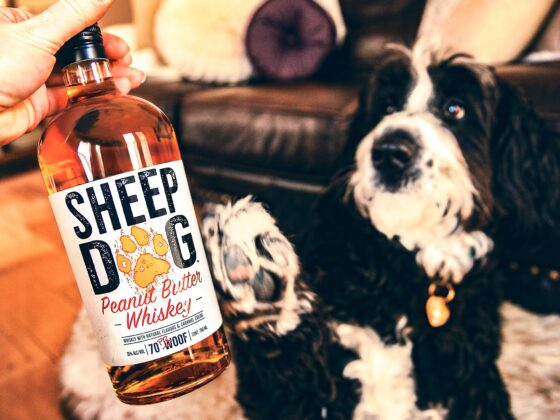Sheep Dog Peanut Butter Whiskey - a taste sensation and one drink you really need to try this month!